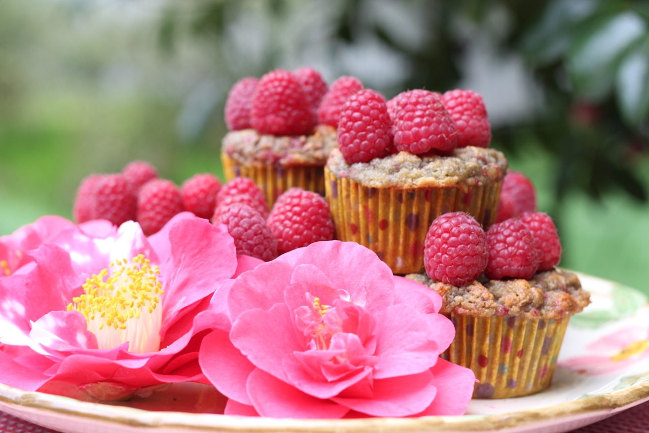 Lemon Raspberry Muffin-sibodietrecipes